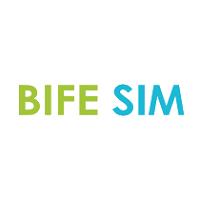 BIFE - SIM  Bucarest