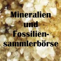 Mineralien und Fossiliensammlerbörse 2022 Eggenburg