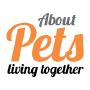 About Pets, Nicosia