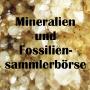 Mineralien und Fossiliensammlerbörse, Eggenburg