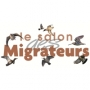 Salon des Migrateurs, Cayeux-sur-Mer