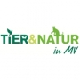 Tier & Natur in MV
